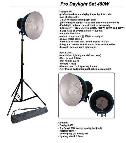 Daylight 450W Lamp with Stand